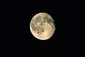 Almost Full Moon, Waning Moon, Night