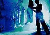 Kühlraum mit Schweinehälften