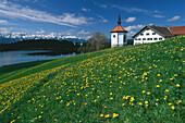 Meadow in front of chapel Hegratsried and farmhouse, near Fuessen, Allgaeu, Bavaria, Germany