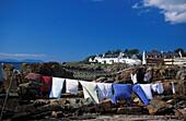 Clothesline, Gairloch, Highlands, Scotland, United Kingdom