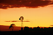 Sunset, Windrad bei Bredasdorp, Suedl. Kapprovinz Suedafrika