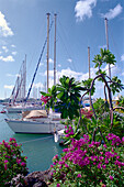 Boats at the marina under clouded sky, Le Marin, Martinique, Caribbean, America