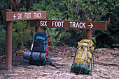 Six Foot Track, Blue Mountains, New South Wales Australia
