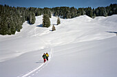 Two people on a cross country ski tour, Skiing, Appenzell, Appenzeller Land, Switzerland
