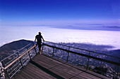 View from a viewpoint on Table Mountain at Cape Town, South Africa, Africa