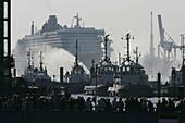 Queen Mary 2, in Hamburg Harbour, Hamburg, Germany, Buch S. 66