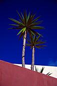 Hotel Rural Finca Las Salinas, Yaiza, Lantarote Kanarische Inseln, Spanien