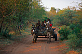 Venda-Kids on donkeycart, Northern Transvaal South Africa