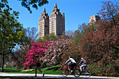 Jogger and cyclists at Central Park, Upper West Side, Manhattan, New York, USA, America