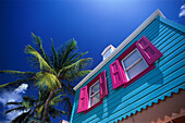 Colourful house and palm tree under blue sky, Pusser´s Landing, West End, Tortola, British Virgin Islands, Caribbean, America
