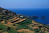 Cala Levante, isle of Pantelleria Italy