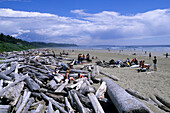 Driftwood at Long Beach, Long Beach, Pacific Rim Nationalpark, Vancouver Island, British Columbia, Canada