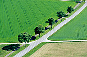Aerial shot of country road near Munich, Bavaria, Germany