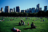 Great Lawan Central Park, New York City USA