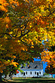 Town hall and autumnal trees, Shakerdorf, Canterbury, New Hampshire, New England, America
