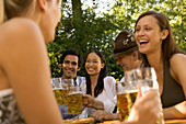 Friends in a beer garden, clinking glasses, Lake Starnberger, Bavaria, Germany