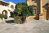 Kloster, Moni Gouvernetou, Akrotiri Kreta, Griechenland