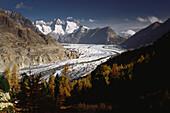Aletsch glacier and mountain landscape, Bernese Alps, Valais, Switzerland