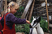 Child stroking a goat, Farm holidays, Agriculture