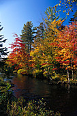 River at fall, P. Quebec Canada