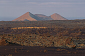 Volcanos on the horizon and camels at dawn, Timanfaya National Park, Lanzarote, Canary Islands, Spain, Europe