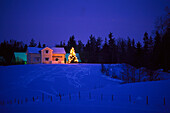Residential house with illuminated christmas tree in a winter landscape in the evening, Vaester Goetland, Sweden, Europe