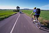 Man riding bicycle, rearview, road near Sineu, Majorca, Spain