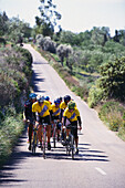 Men on racing bikes on a sunlit country road, Majorca, Spain, Europe