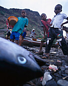Fishing, Santiago Cape Verde