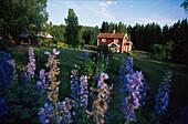 Katthult farm, village of Gibberyd, location for Michel from Loenneberga, Smaland, Sweden, Europa