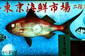 Advertisement on a house facade, Fishmonger sells live fish, red light district Kabukicho, Shinjuku, Tokyo, Japan