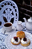 Cream Tea &Scones and clotted cream, Cornwall, England, Great Britain, Europe