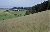 Molsbjerge, Farmland, Juetland Denmark