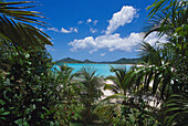 Jolly Bay, View from Cocos Resort St. John's, Antigua, Caribbean