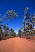 Cyclists on Outback Track, Kakadu NP NT, Australia