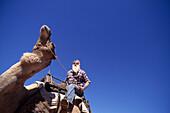 Noel Fullerton´s Camel Safari, Stuarts Well, near Alice Springs NT, Australia