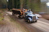 Logging Truck, Oregon USA