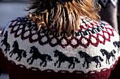 Icelandic Horse Sweater, Ísafjörður, Isafj'rdur, Ísafjarðarbær, Iceland