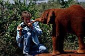 Junger Elefant, Ajok Kura
