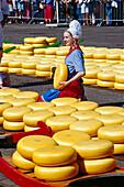 Kaesemarkt, Alkmaar Niederlande