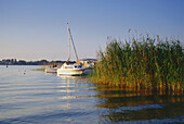 Boats in Lake Mueritz-Binnensee, Mecklenburgian Lake District, Mecklenburg-Western Pomerania, Germany