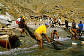 Fishermen with net, Taganga, Santa Marta, Colombia, South America