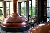 Copper brew kettles, Paulaner Brauerei, Munich, Bavaria, Germany