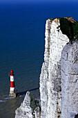 Kliff und Leuchtturm von Beachy Head, Eastbourne, Sussex, England, Grossbritannien, Europa