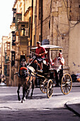 Horse drawn carriage in an alley, Valletta, Malta, Europe