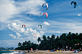Sky, Kite Surfing, Beach, Kite Surfing on the beach of Cabarete, Dominican Republic