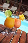 Planters Punch, Drinks, Slang, Hotel Le Jardin Malanga, Trois Rivieres, Basse-Terre, Guadeloupe, Caribbean Sea, America