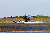 Tourists are making an Airboat Trip, Everglades, Florida USA