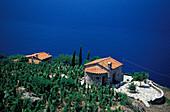 Weinanbau im Westen, Elba, Toskana, Italien