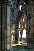 Rievaulx Abbey ruin, Yorkshire, England, United Kingdom